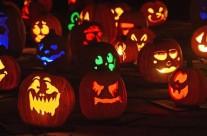 Halloween Hop!